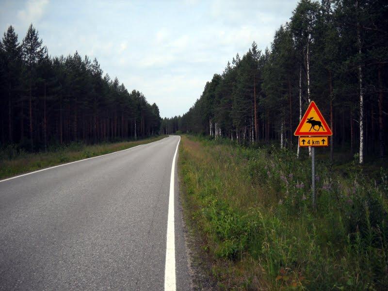 10 Matkapaiva Ilomantsi Lappeenranta Tapanikunnas Net