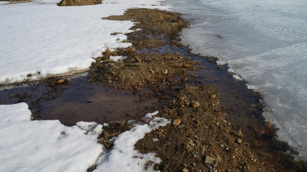Kirkasvetisen hiekkakuopan reunasta saan tarvitsemani veden.