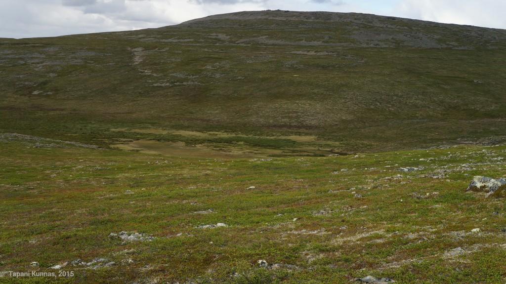 Suo tuntureiden välisen laakson pohjalla.