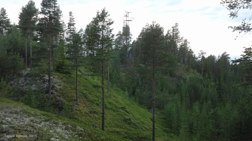 Kiipeän mäen päälle kuvassa näkyvää harjannetta pitkin.