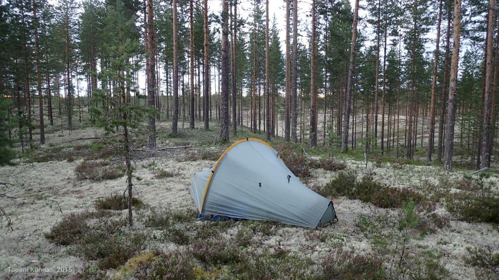 Onnistun lopulta löytämään kuivan paikan teltalleni harjanteen päällä olevalta vanhalta polku-uralta.