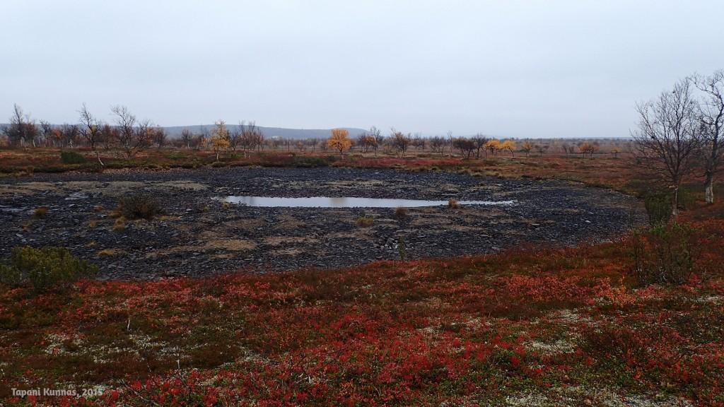 Lähes kokonaan kuivunut lampi, joka kesäkuun lopussa oli ääriään myöten täynnä.
