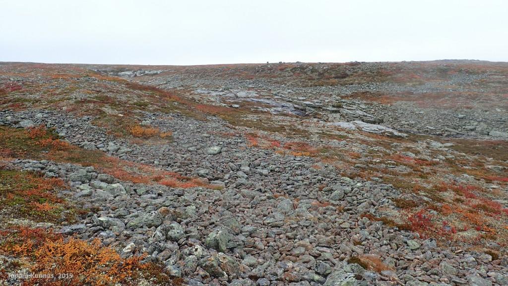 Kiviä ja ruskan punertamaa varvikkoa.
