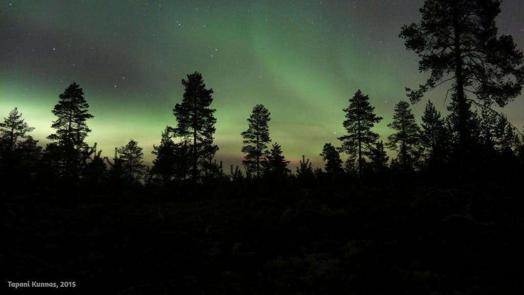 Reposet vaeltavat vauhdilla pitkin pohjoista taivaanpuoliskoa. Puolen minuutin valotusajoilla on hieman vaikeaa pysyä perässä.