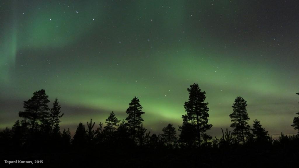 Illan revontulinäytelmä on lyhyt, mutta kiihkeä. Taivaalla tapahtuu koko ajan.