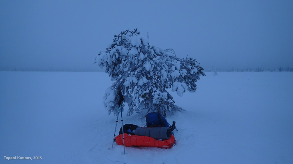 Avotunturista löytynyt puu tarjoaa tuulensuojaisen lounaspaikan.