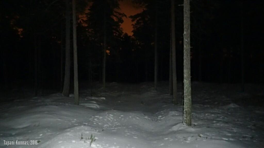 Haukiputaan, Isoniemen ja Virpiniemen muodostama kolmio on täynnä itä-länsi -suuntaisia polkuja. Niistä sopii valita mieleinen - vaikka jokin sellainen, jolla saa tehdä omat jäljet koskemattomaan lumeen.