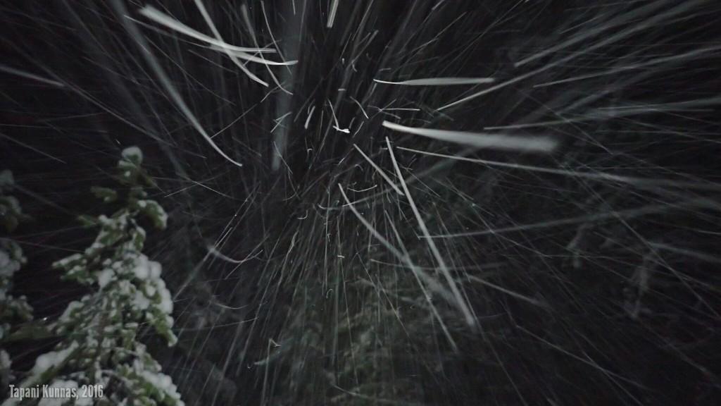 Salaman kanssa suoraan tuuleen päin kuvattu lumisade näyttää aika hienolta.