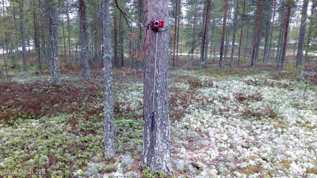 Kamera nojailee puuhun valmistautuessaan videoimaan leiripaikalta poistumisen.