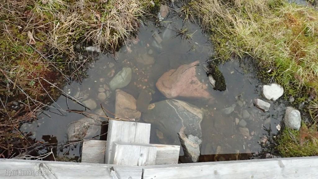 Kirkasvetinen kuoppa pitkosten vieressä ja alla. Veden ulkonäöstä päätellen tässä voisi olla vaikka lähde.