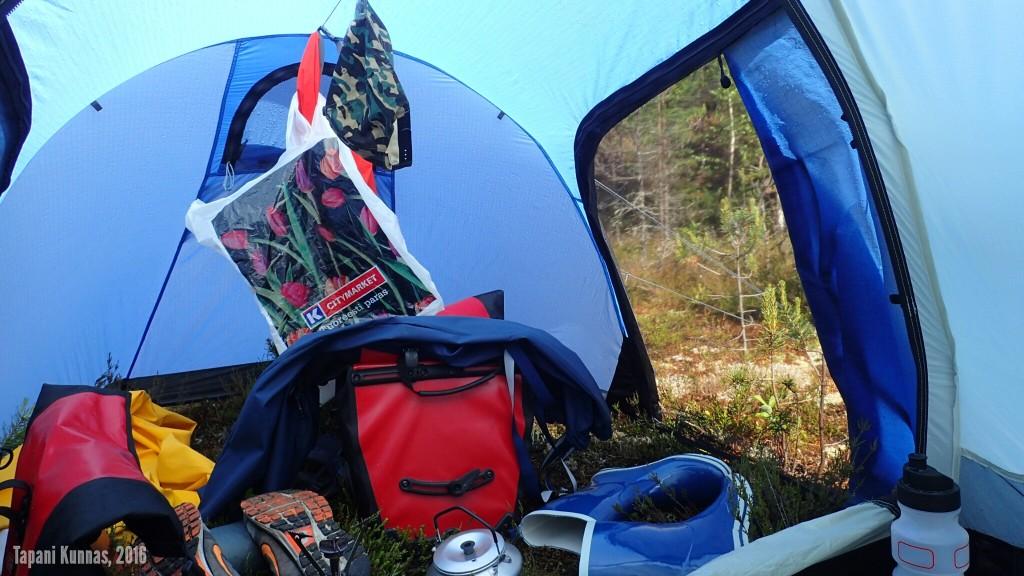 Poutaisina hetkinä teltassa tulee lämmin. Ovet auki ja raitista ilmaa sisään.