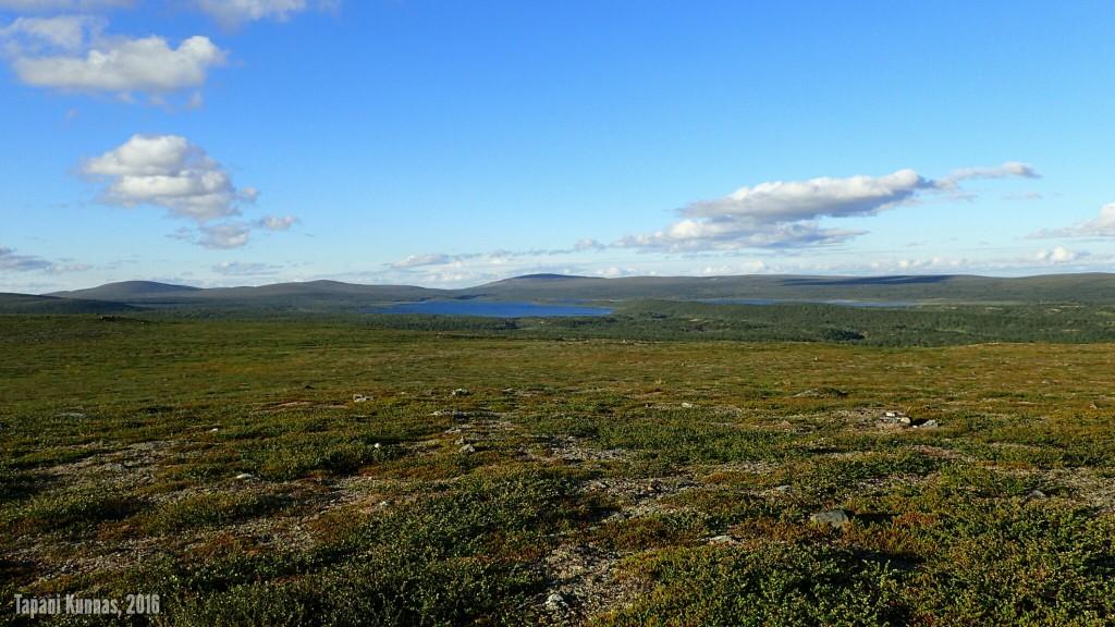 Näkymä Niillasašvárrilta kohti Luomusjärviä ja Kevon luonnonpuistoa.