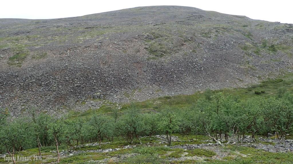 Áilegasroavegorsan laakso pohjoispuolelta kuvattuna. Tähän laaksoon laskeudumme etualalla näkyvän metsäisen rinteen kautta.