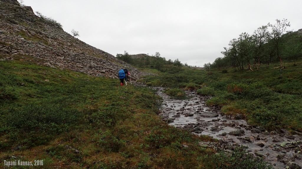 Áilegasroavegorsan vieressä on sopivasti tilaa kulkemiseen ja paikoin jopa polkuja.