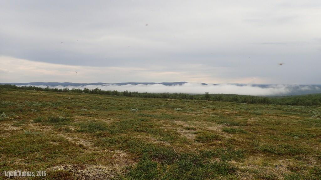 Ukonilman jälkeinen pilvi suon yllä.
