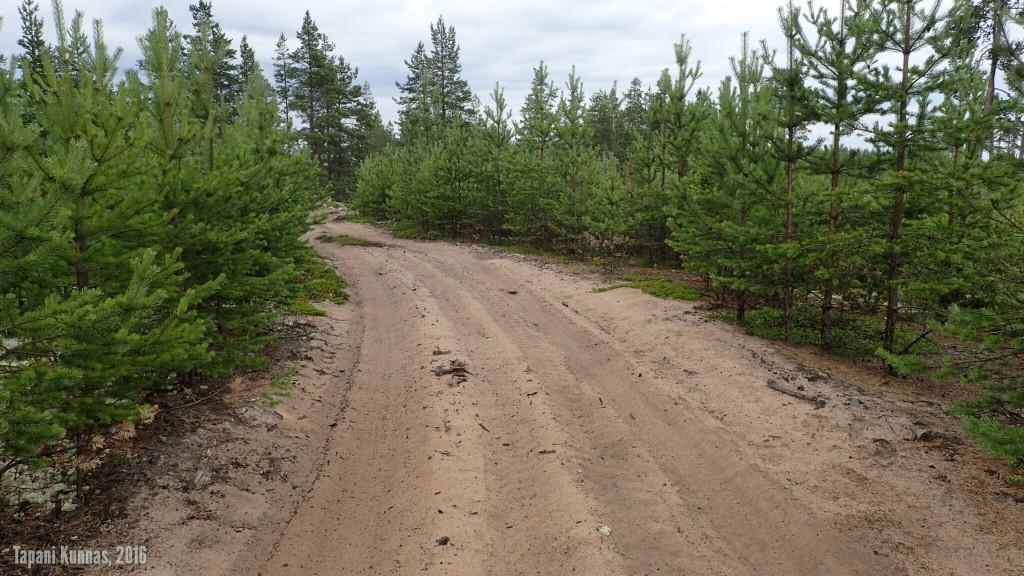 Iso osa Hailuodosta on yhtä suurta hiekkakakkua. Tällaisella tiellä ei kävele mielellään, vaikka se onkin pyörillä varustettua kulkumuotoa varmempi etenemistapa.