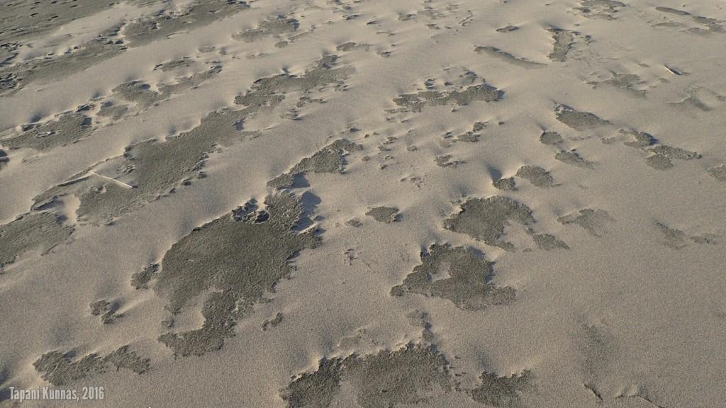 Vaalea hiekka on kuivaa ja hyvin hienojakoisena se kulkeutuu tuulen mukana pitkin rantaa. Tumma hiekka on kosteaa ja pysyy paikallaan.