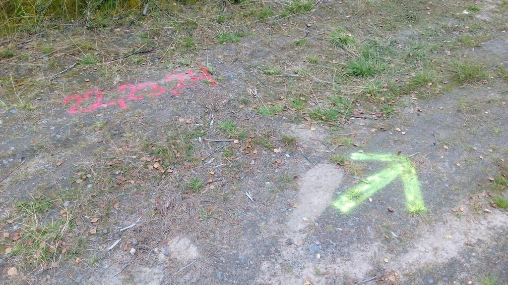 Erikoisia merkintöjä tien pinnassa.