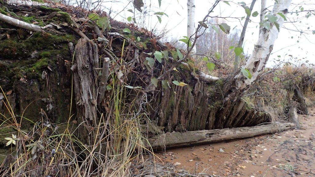 Vanhat laiturirakennelmat ovat tavallisesti näkymättömissä, mutta nyt niitä pääsee tarkastelemaan lähietäisyydeltä.