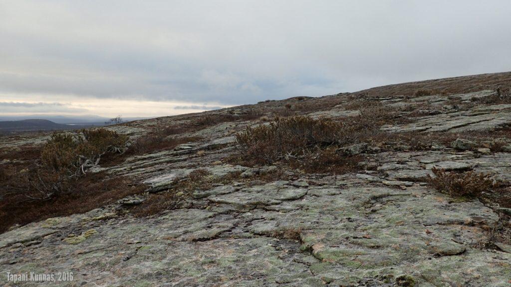Gieđmeskálonjunnin kaakkoisrinteen kallioita.