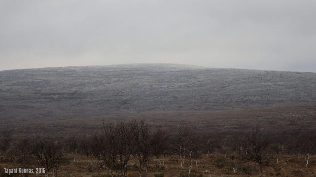 Gaskkamušalášin itärinne on karu ja kivikkoinen, mutta kyllä siitäkin pääsee ylös. Viime kesänä menimme veljentyttärien kanssa suunnilleen kuvan keskeltä, missä nousua laaksosta tulee noin kaksisataa metriä.