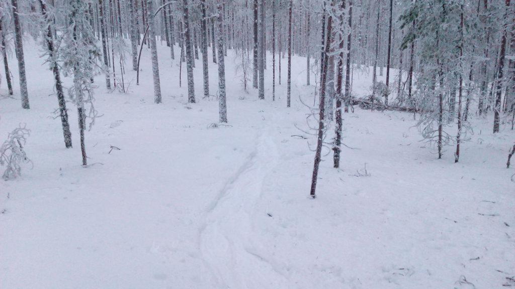 Lumikenkäilijöiden polku.