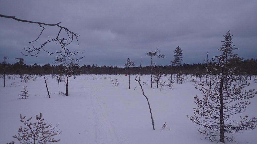 Olen pakannut telttakäärön itse tekemääni tarppiin. Hohto-oranssina se on myös hyvä turvavaruste - väriläiskä näkyy talvisessa maisemassa kauas.