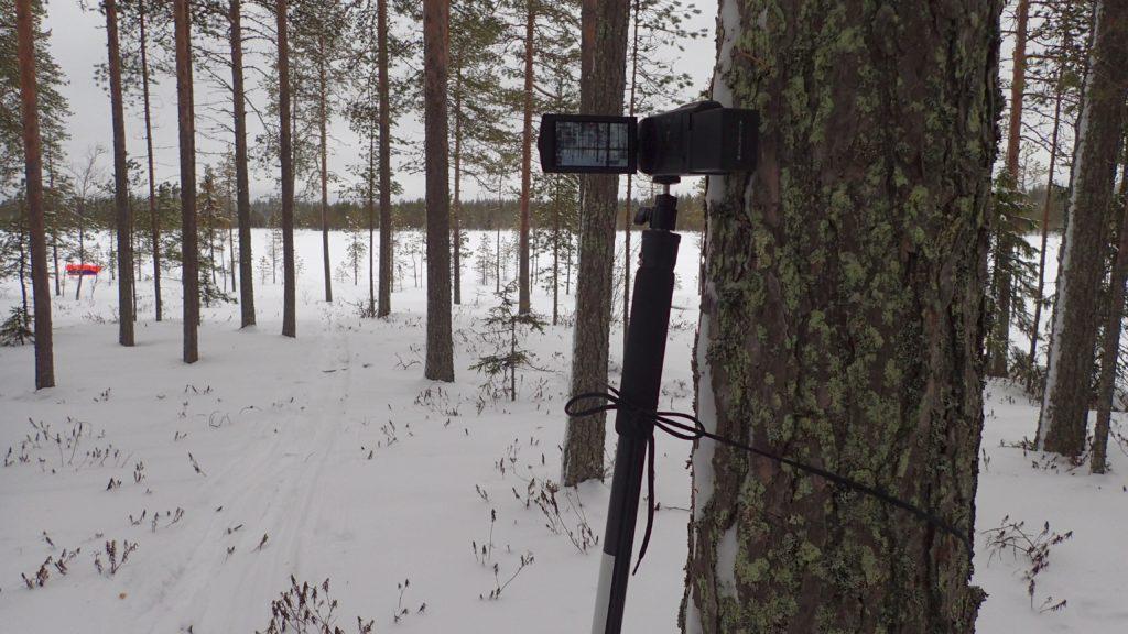 Videokuvauskalustoni. Sony HDR-CX450 -videokamera monopodijalustaan kiinnitettyyn kuulapäähän ruuvattuna. Kaatuminen estetty sitomalla keppi puuhun vanhalla kengännauhalla.